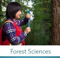 Forest Sciences