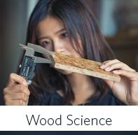 Wood Science