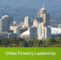 Learn more about the Master of Urban Forestry Leadership Program